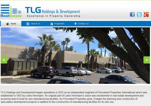 TLG Holdings And Development